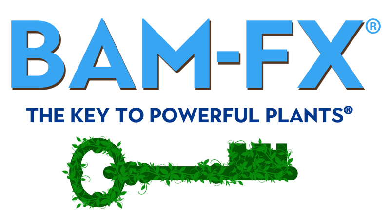 BAM-FX, BAM-FX the key to powerful plants, powerful plants